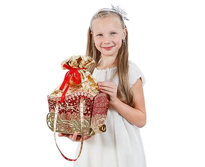 Новогодний подарок Сани Деда Мороза
